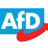 Alternative für Deutschland-ein Einblick in die AfD anlässlich der Wahlen in Deutschland